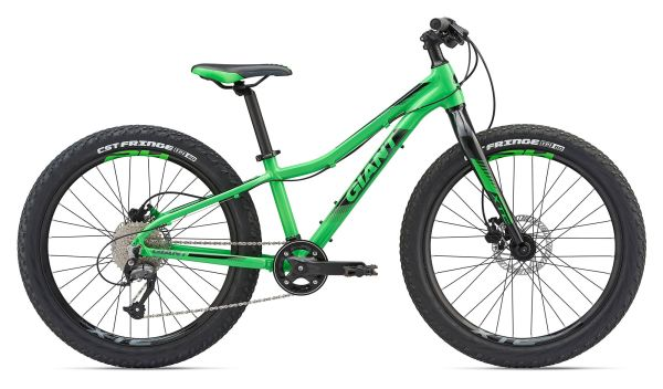 CLOSEOUT Warehouse 2019 Giant XTC Jr 24 +