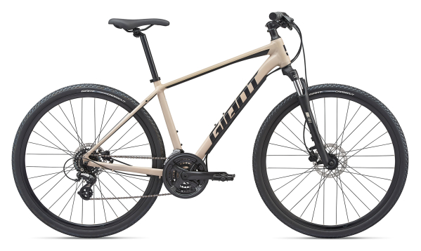 2020 Giant Roam 4 Disc